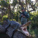 Gator-Hunting-Lake-Okeechobee-SouthFloridaFishingandHunting.com